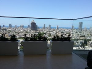 גינות מעוצבות גם בדירות גג!