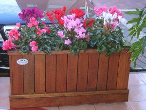 בחירת צבעים – לגינה, רהיטים, מרצפות וכו