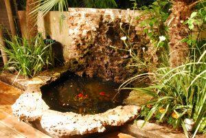 בריכות נוי לגינה – סוגי בריכות, כיצד בוחרים, עלות